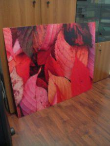 Scritte adesive e stampa digitale per quadri